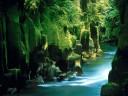 Respect Nature!